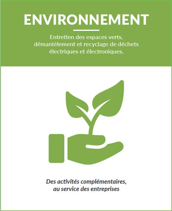 ESAT environnement